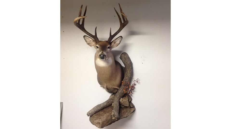 game head mount
